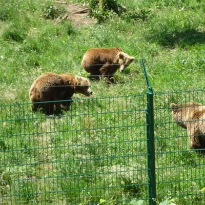 senda del oso oferta hotel